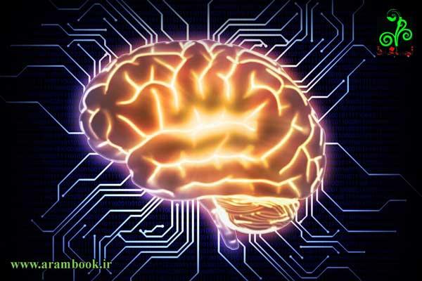 آدمک مغزی